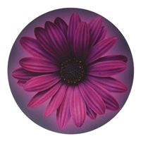 Handstands Basic Plus Mouse Pad Purple Flower Round