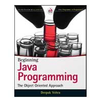 Wiley Beginning Java Programming: The Object-Oriented Approach, 1st Edition