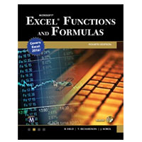 Stylus Publishing Microsoft Excel Functions and Formulas, 4th Edition