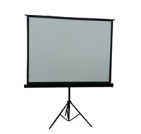 "Inland 100"" Portable Projection Screen"