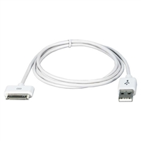 QVS 1.5m USB Sync and 2.1Amp Charger Cable for iPod4/iPhone and iPad 2/3, White (AC-1.5M)