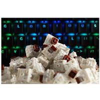 Glorious PC Gaming Race Kailh Mechanical Keyboard Switches (Brown)