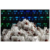 Glorious PC Gaming Race Gateron Mechanical Keyboard Switches (Brown)